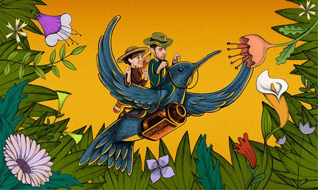 11-colibri