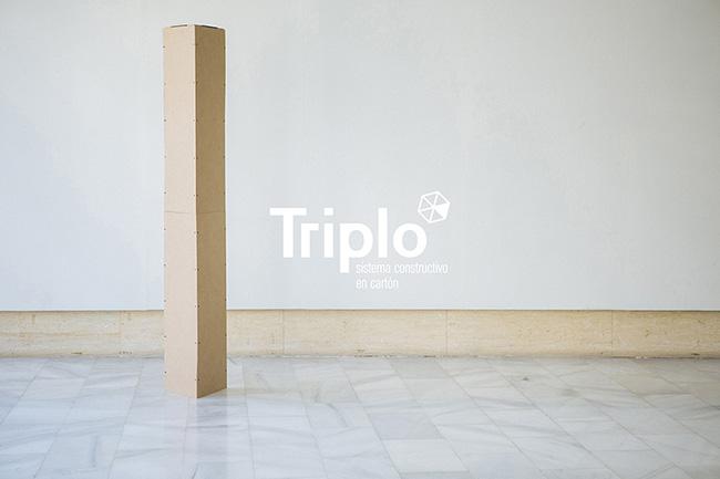 Presentación de posibles construcciones con piezas Triplo*