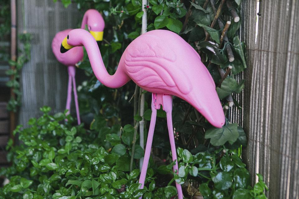 01 detalle flamencos rosas en casa de novios