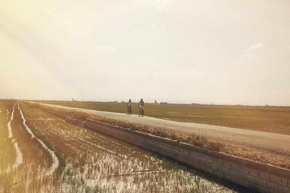 paseo entre arrozales en valencia