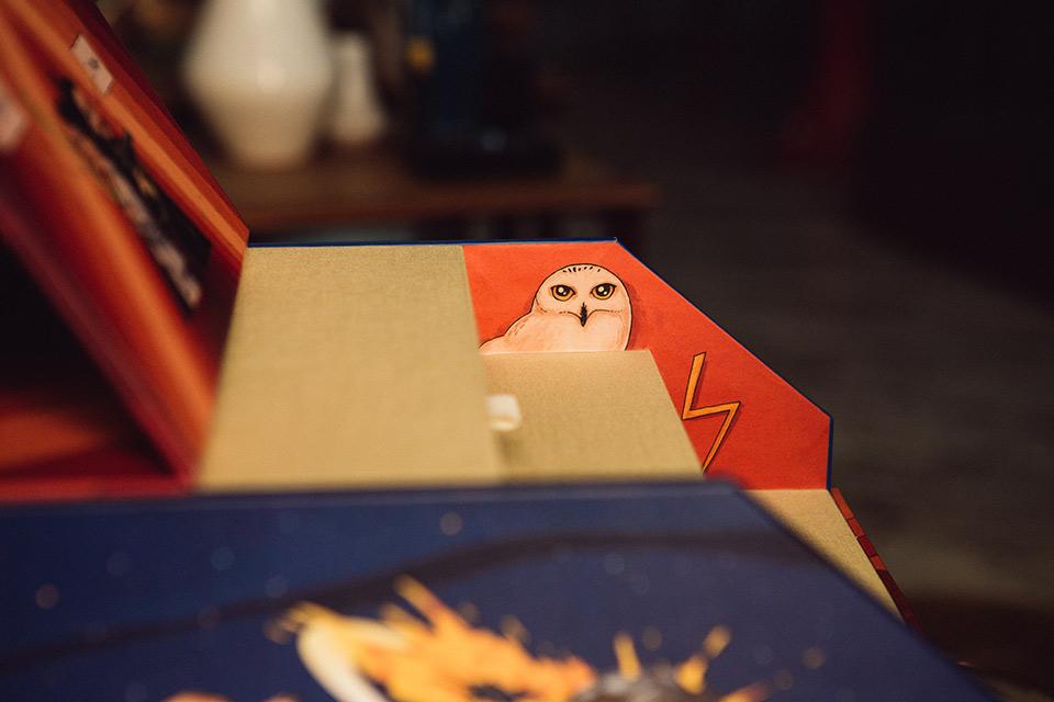 harry-potter-homenaje-en-caja-fandi