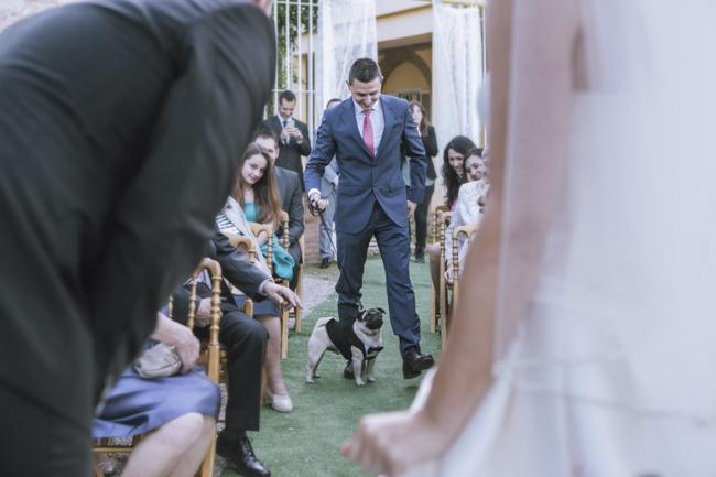 04 perro en la ceremonia llevando anillos