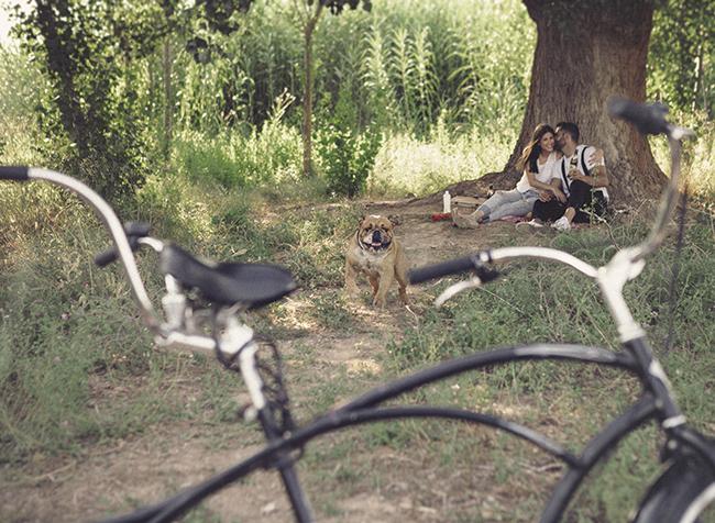 06 preboda con mascotas y bicis
