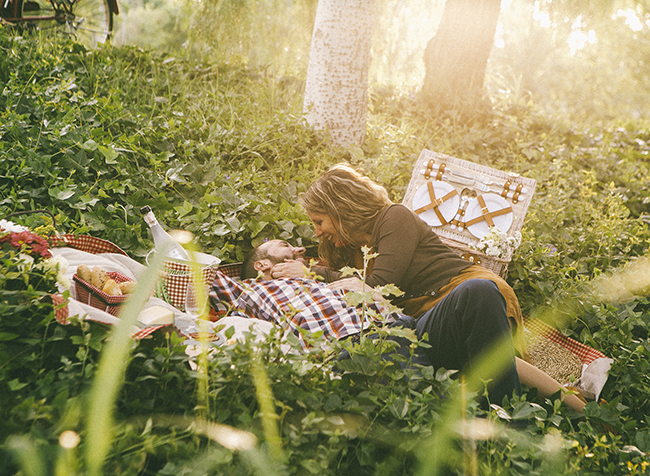 19 hagamos un picnic