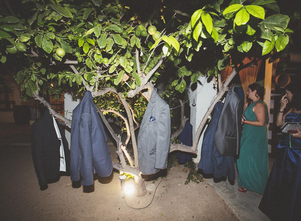 73-chaquetas-colgadas-en-un-arbol
